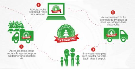 Concept Treezmas